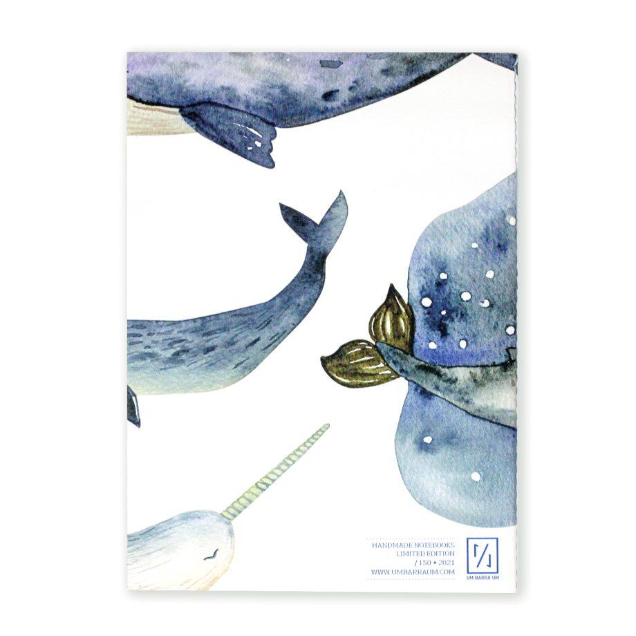orca_costas-2