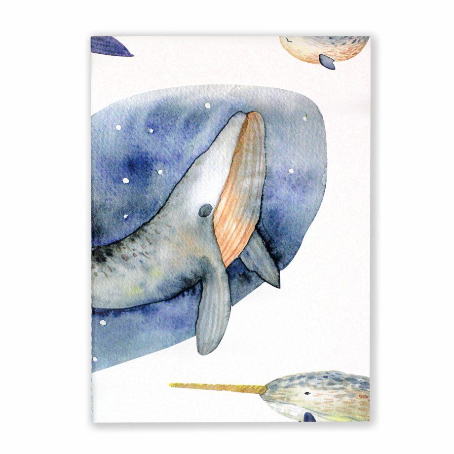 orca_frente-3